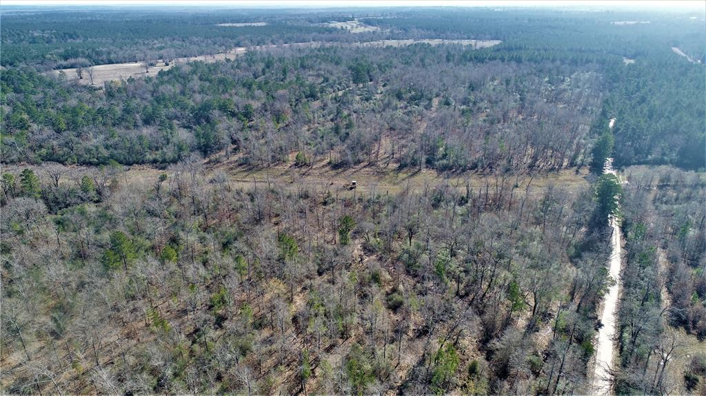ENDLESS POSSIBILITIES!   This 52-acre tact in the highly desirable Lovelady ISD, has a lot of road frontage on CR 3420 with tons of potential to be used for recreational, investment, or full-time living. This property is currently used for a great hunting tract but could easily be sub-divided into smaller tracts or be used for a home place. This property is a nice mix of pine plantation and hardwoods. The owner reports excellent deer and hog hunting. Call us today for more details.