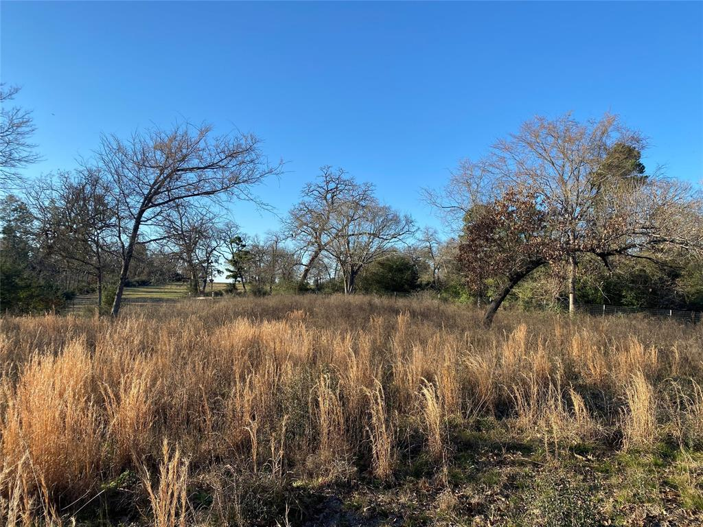 We appreciate the opportunity to present this beautiful 3 Acres. Its been the passion of its current owners for several years & it's easy to see that they had a vision in mind for it. There are several ideal home sites and outbuilding locations. This land is only a few minutes from FM 1097 West and the property has a beautiful hillside with approx 20' of elevation change. The sandy soils, scattered trees, natural grasses and beautiful views are just waiting for that dream home. The property's natural slope and road frontage face east and west and will be ideal for beautiful sunsets on the back porch. The property is a nice rectangular parcel, selectively cleared, fenced on 4 sides, paved road frontage, 2019 Water Well with a 2 HP pump and electricity in place. Its difficult to find 3 acres like this in MISD these days, particularly one that's ready to build on. Bring your home plans and move in your dream home before the new school year. Please call Shannon to schedule your showing!