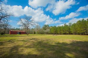 16513 Grand Flower Road, Plantersville, TX 77363