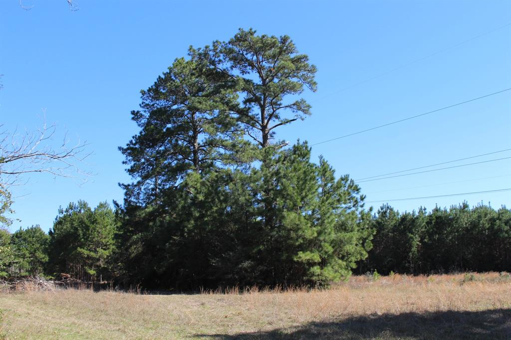 21.429 acres comprised of six adjoining tracts.  Mostly wooded, some cleared areas; level, no flood plain.  309 feet of frontage on a paved county-maintained road.   The land adjoins Bentwater subdivision.  Property is unrestricted so you can follow your vision for a family estate or a nature sanctuary or a small farm.