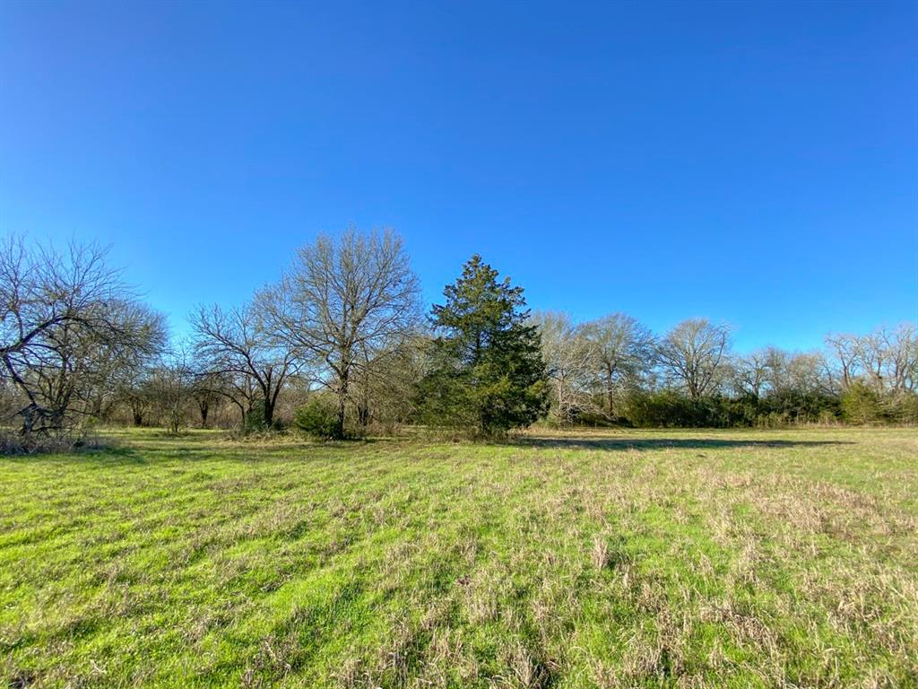 """A great 15 ±acre homesite with abundant wildlife! This property would make a great tract for horses and your next home! """"Doe Run"""" creek runs through a portion of the property and attracts all kinds of wildlife. The property has electricity established and is in a wonderful area. Close to Brenham, Navasota, and is right off of Hwy 105. Priced to sell! Don't hesitate to call!"""