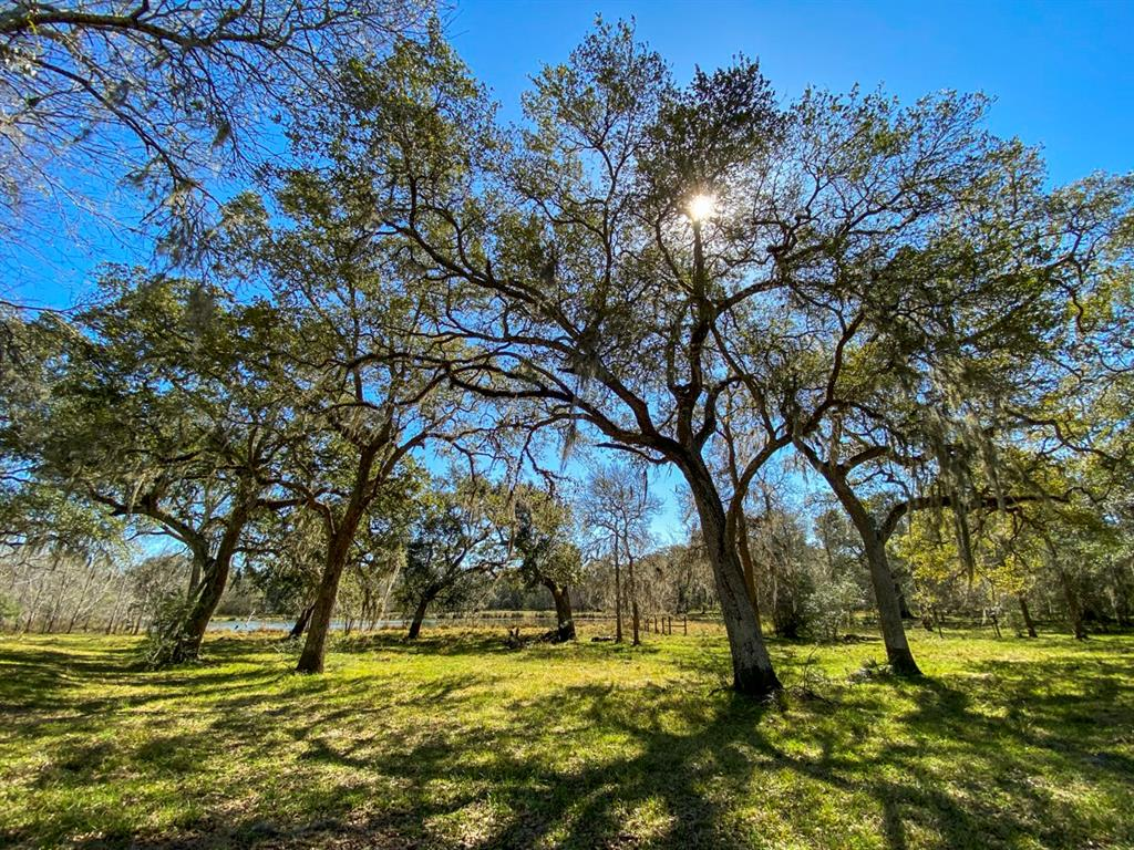 Look no further than this beautiful Cow Creek frontage property! This unique 253 acre ± ranch boasts beautiful hardwoods, a gorgeous lake, excellent hunting, great roads throughout, cow creek frontage, and so much more. The ranch is situated in very close proximity to Sugar Land, Houston, and Brazos Bend State Park. This wonderful property is a perfect opportunity for any residential, recreational, or agricultural buyer.