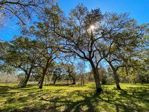 000 Forest Road, Damon, TX, 77430