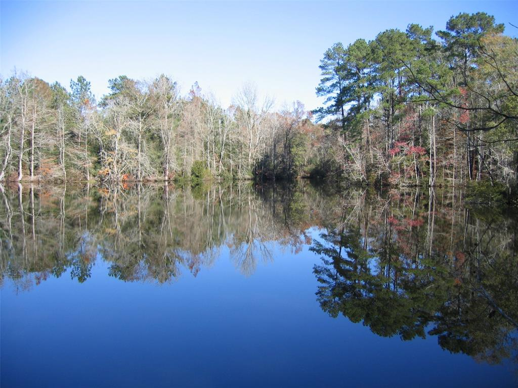 Beautiful lot overlooking Cedar Lake, which is connected by a navigable channel to larger Maple Lake.  Heavy woods on one side and large trees (Loblolly pines, sycamores, cotton woods and oaks) separating it from the lot on the other side.  Situated in a quiet cul-de-sac-type section of Artesian Lakes with only three other lots.  Two of the other lots already have beautiful homes on them.  Idyllic setting with beautiful views and lots of privacy.