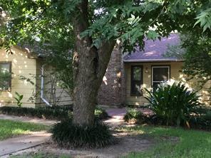 217 Ranier, Livingston, TX, 77351