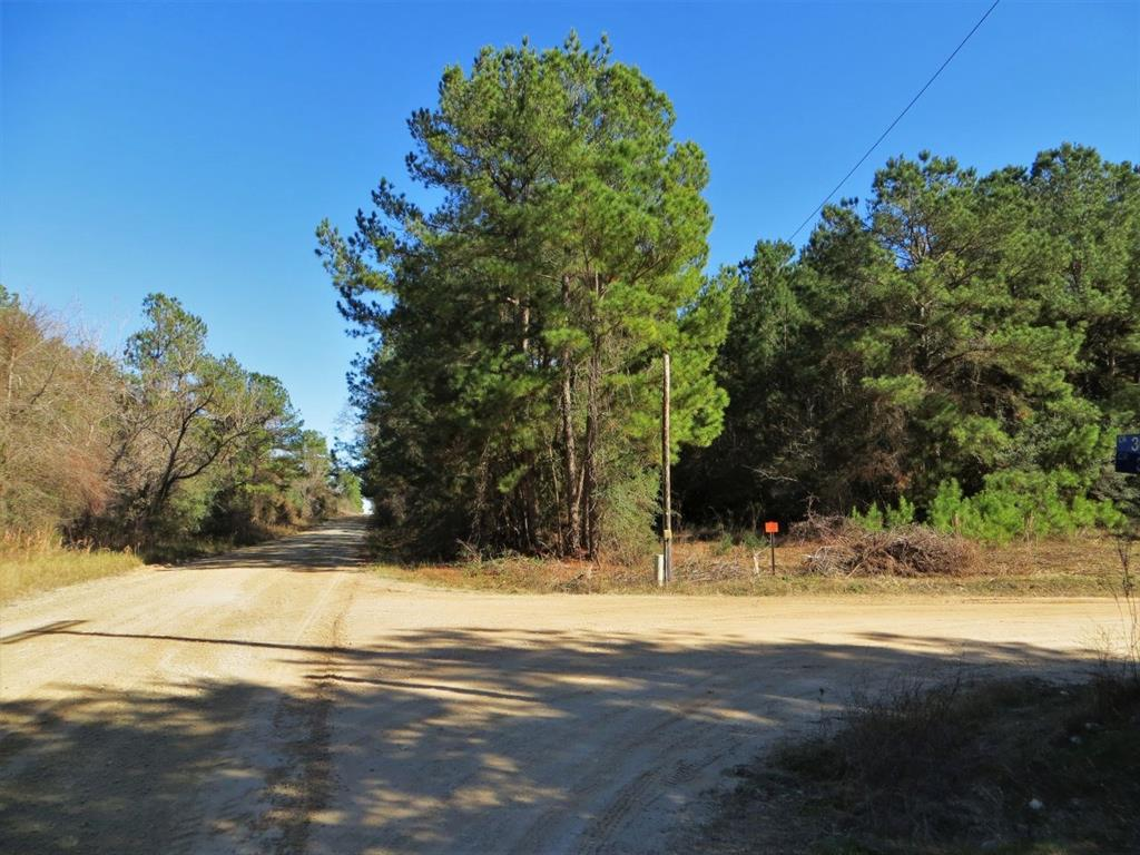 5 Wooded Acs Located near the Highly Sought After Whitehall Area.  Property has frontage on CR 306 and CR 307.  Nice Wooded Home Sites to choose from,  Sandy Soil, Abundant Wildlife , Electricity, Light Restrictions and Ag Exempt.  Great Location.  Easy access to State Highway  105 or FM 362. Mins from proposed FM 249 (Aggie Expressway)