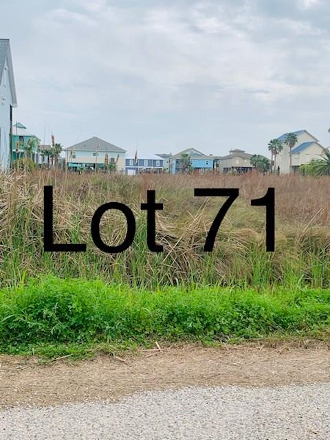 TBD71 Whooping Crane Street, Port O Connor, TX 77982