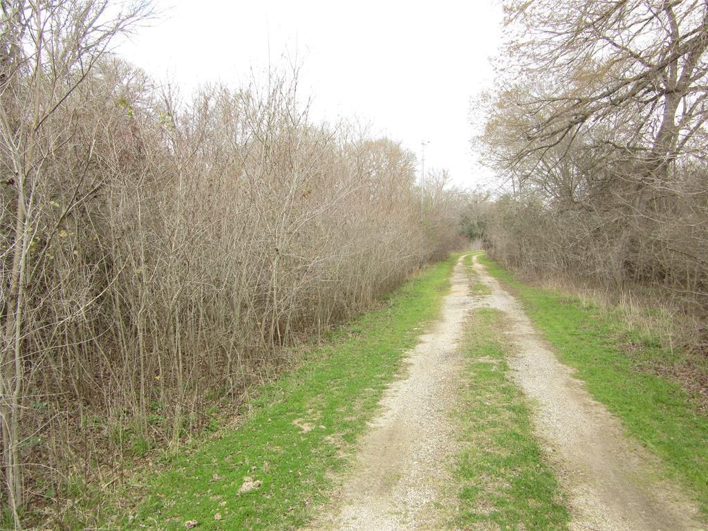 0000 Doe Run Drive, Cistern, TX 78941