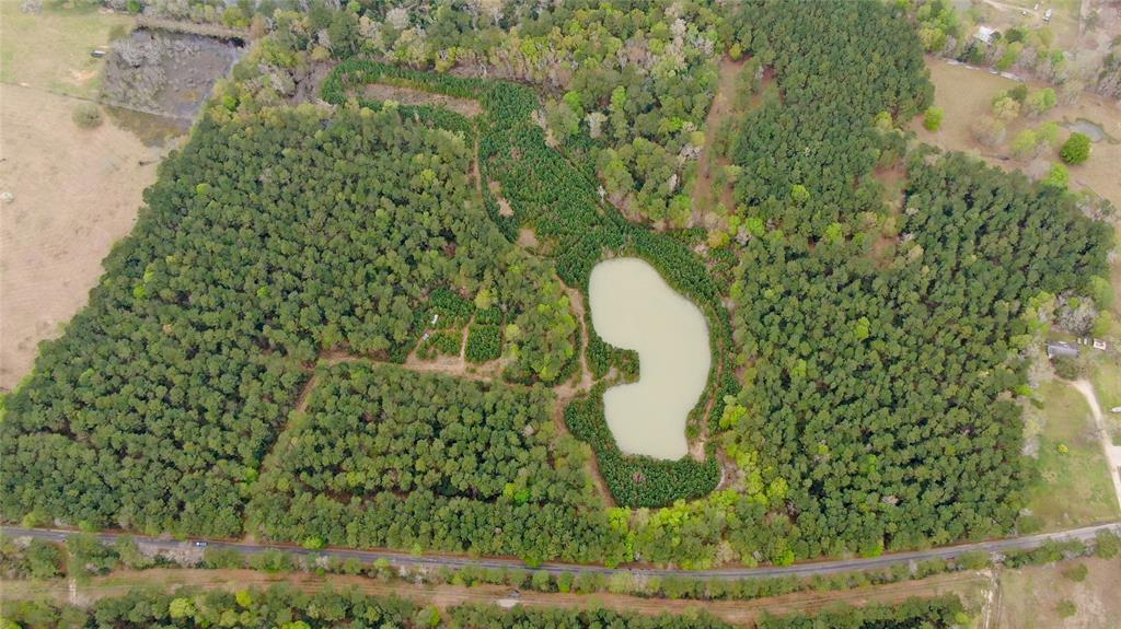 With over 42 acres the possibilities for this property are endless!  Property is fully fenced and has a large acre+ pond on it.  Very private with 2 access gates on each end.  Fully fenced.   Needs some clearing, but has a lot of potential. Schedule a showing - you will not be disappointed!