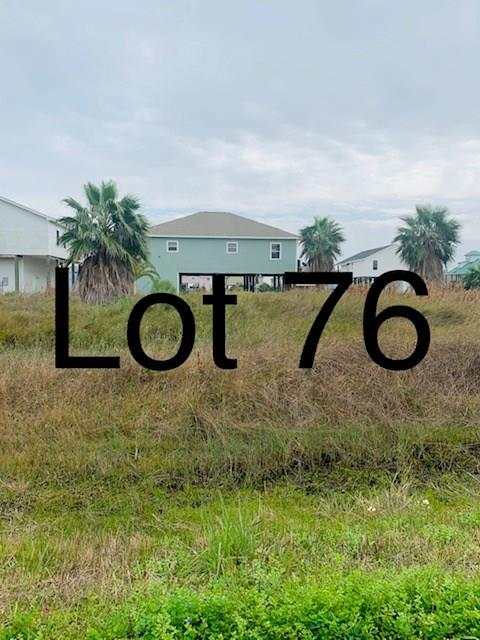 TBD76 Whooping Crane Street, Port O Connor, TX 77982