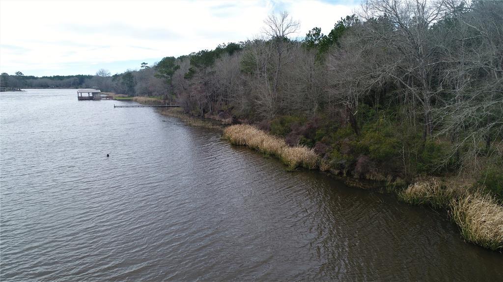 TBD Pine Island Cove Road, Grapeland, TX 75844