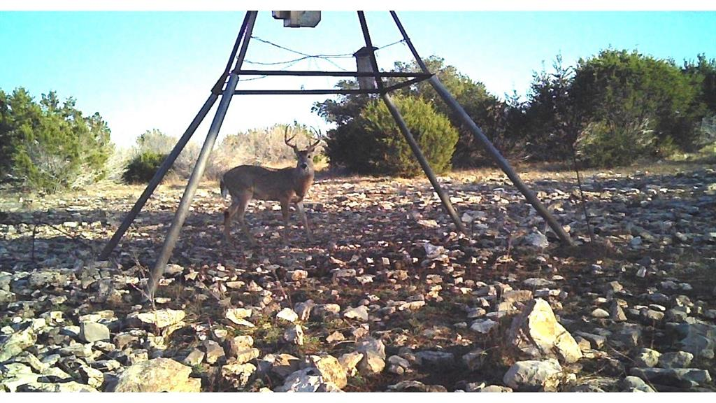 2028 Yo Ranch Road NW Road, Mountain Home, TX 78058