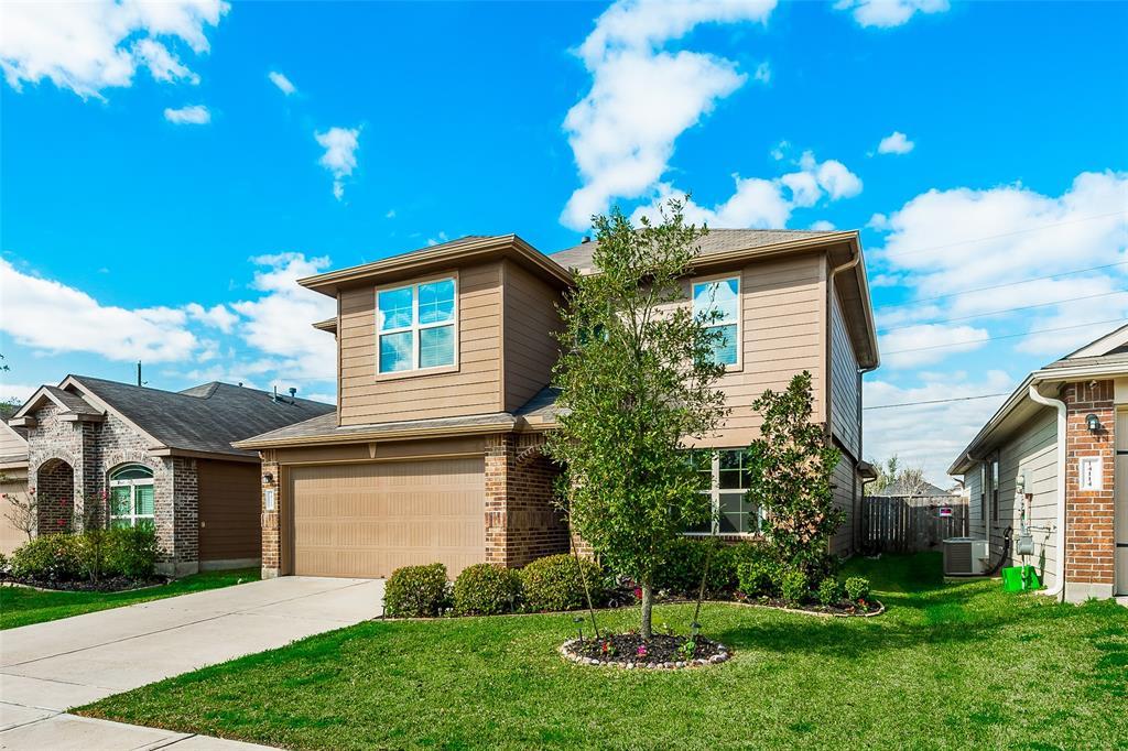 14118 Brunswick Place Drive, Houston, TX 77047