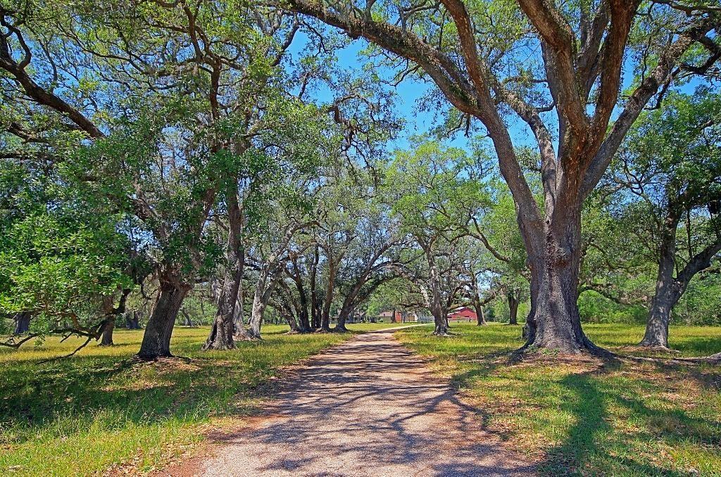 501 Brit Bailey Boulevard, Angleton, TX 77515