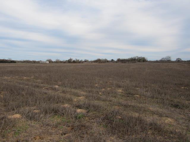Lot 8 County Rd 249, Oakwood, TX 75855