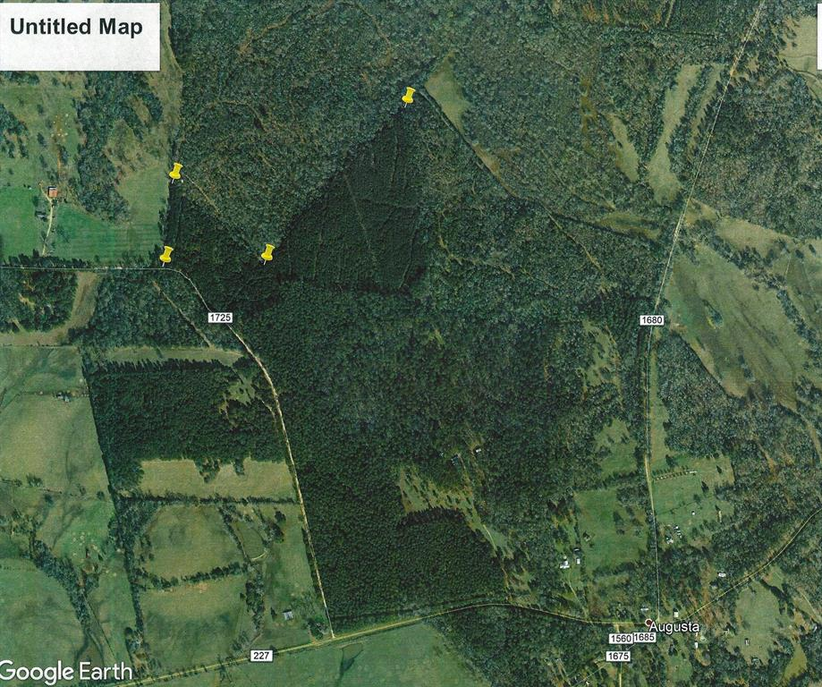 Nice tract of land that would make a great hunting spot for both deer and hogs. This 100 +/- acres of land is located in the Eastern Houston County close to the community of Augusta on CR 1725 which is off of FM 227. This land features brush and thickets with several mature hardwoods along Silver Creek which borders the South side of the property. The owner states that the creek will have water in it year around. You will find a good road system for ATV's throughout the property along with a great camping spot. There is community water along CR 1725 which could be extended into the property along with electricity that is available. There are box stands on the property that will be left along with some feeders in place. This is truly a great piece of land not just for hunting but it would make a great place to build a home. Call us to see this property today.