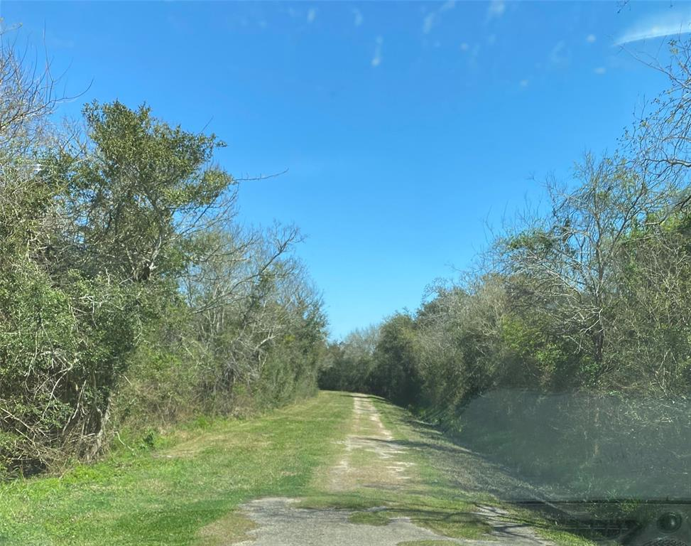 Tract I Willow, High Island, TX 77623