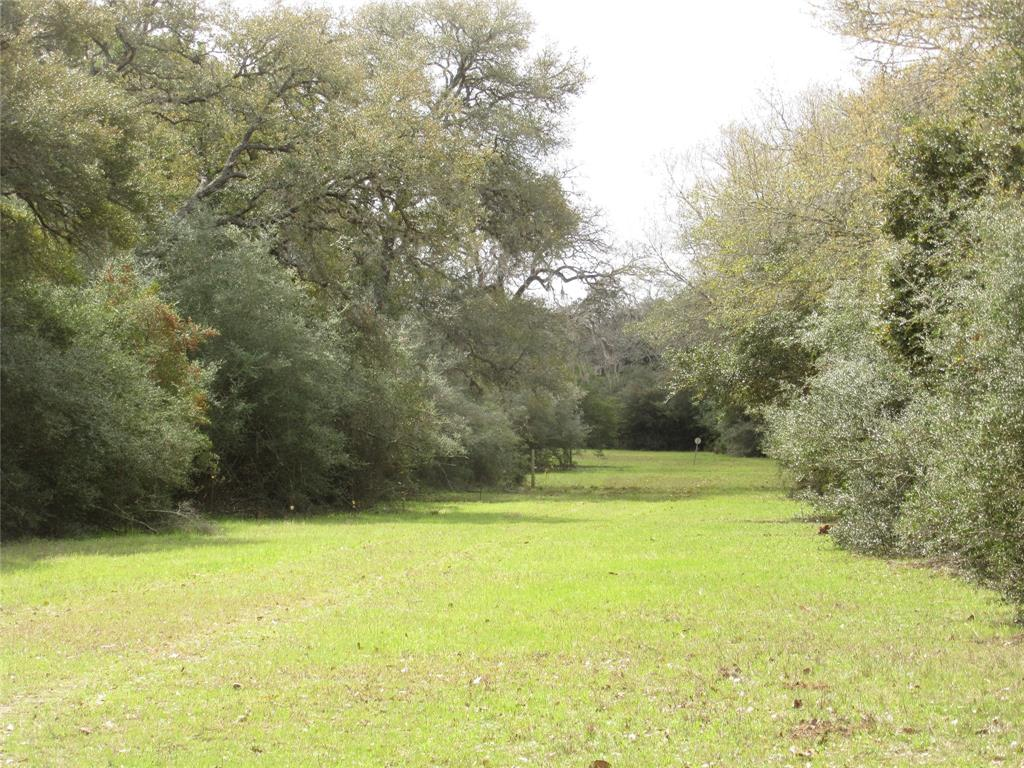 A nice 31.8 acres on Shaw's Bend Road with Rocky Creek bordering the east boundary.  Property is all wooded with thick yaupon and other hardwoods.  Has a pipeline easement going across the property and divides the property. Has a small pond on the front end near the road.  Property is 958 ft. wide and backs up to Rocky Creek. Sellers own some minerals and will negotiate.  There are no fences on the west boundary line. Property nis Ag. Exempt and has deer, hogs and other varmints roam the property.