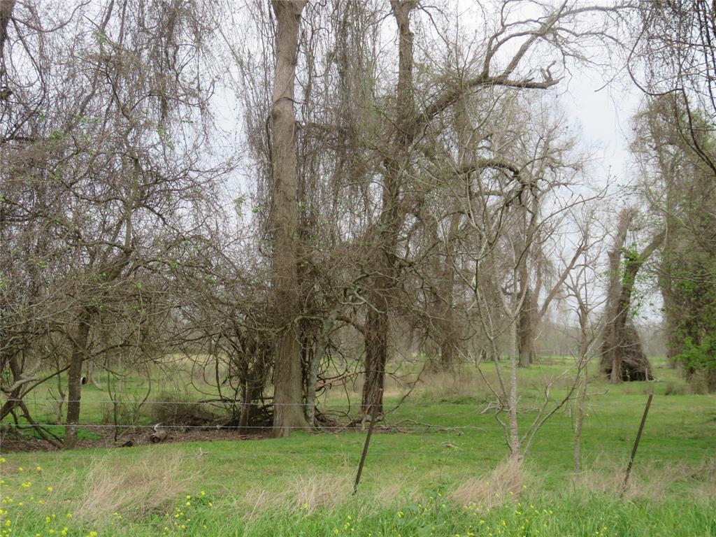 0 County Rd 269 Road, Elm Grove, TX 77434