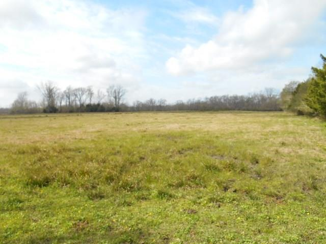 Great frontage on River Loop Rd (CR 133). Across from Cypress Hill Ranch sign corner of CR 1341 to end at silver gate on right. Three tracts with coastal Bermuda grass. Fencing. Is under AG Exemption. Per seller some flooding has occurred on one end of property.