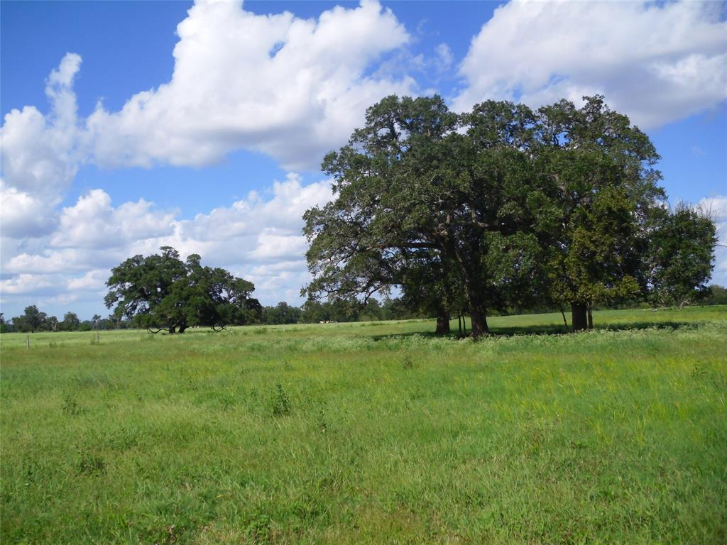 11.6 acres located in Wharton County only 30 minutes South of Rosenberg.   This is as close to country living as you can get while still being close to the city!   Mostly open with a couple of large Oak trees and access from a paved county road.  Electric at the road and a culverted access driveway off the county road.  Call with questions!