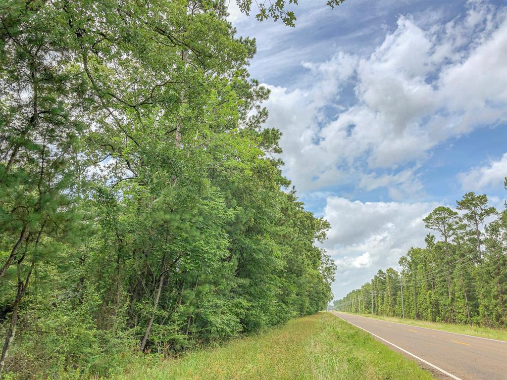 1st time open market offering. Historically used as industry forestland. Mostly in 2010 pine plantation allows you to shape to your desire. Gently sloping topography is ideal for building, gardens, crops, and/or livestock. FM 356 frontage ensuring excellent access. Utilities along FM 356.  (accessibility subject to confirmation by providers). Close to Lake Livingston !