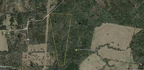 TBD CR 4200, Pennington, TX 75856
