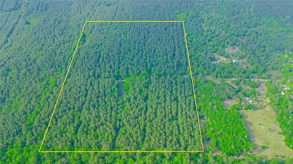 Gorgeous densely wooded 50-acre property situated in the low-tax area of San Jacinto County, just 7 miles from the heart of Shepherd! This property is has loads of potential no matter the use - whether it be recreational or residential. If you're looking for a sizable piece of country paradise that is located just minutes from the city and all of the amenities Shepherd has to offer, look no further. Schedule a showing today!