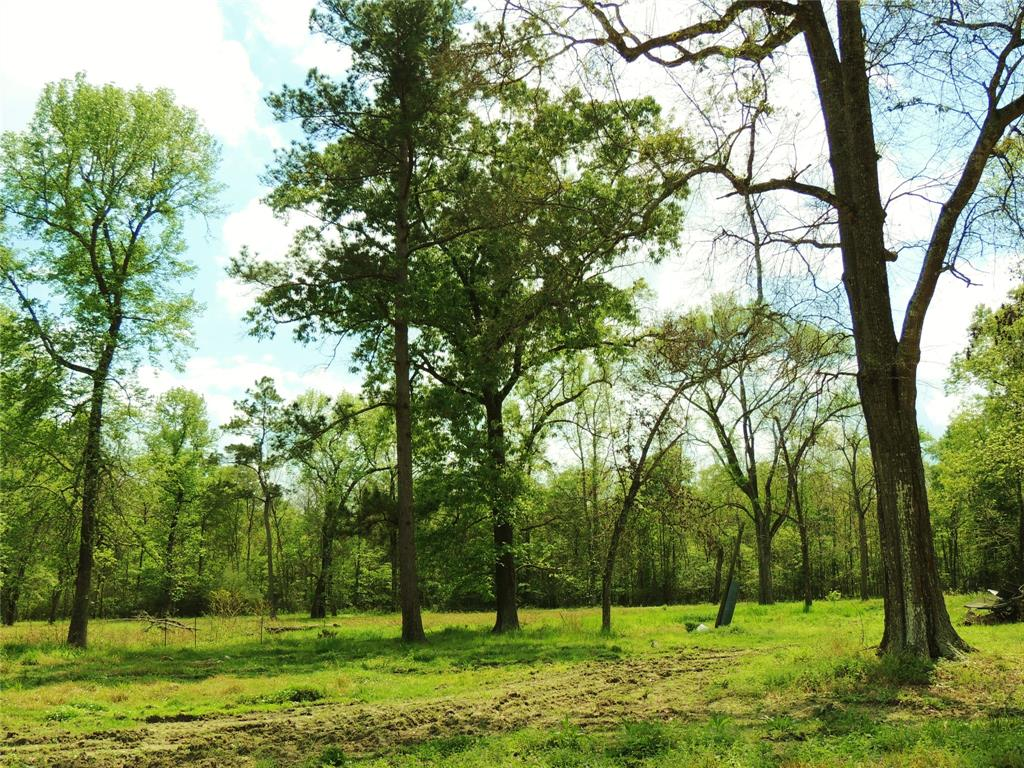 This 4 acre tract is located in Tarkington ISD, nice quiet neighborhood. No restrictions. This property is improved with Well, Septic and Electricity. Mobile homes welcome. There are so many possibilities with this property whether you are looking to build or buy a mobile home this lot is ready for your dream home!