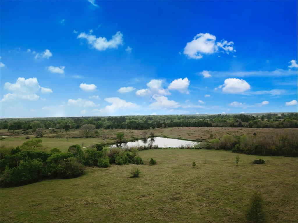 35 acres approx.. 557 foot fronting FM 149 in Montgomery. A beautiful 2 acre pond, rolling terrain a small creek separates the frontage from the back building sites. This tract is well suited for both raising of livestock and or maintaining wildlife. The FM 149 frontage gives plenty of opportunity to develop commercial site as well as residential. There will be light restrictions. Located three miles from Montgomery only minutes from Conroe, The Woodlands and Magnolia. Enjoy country living with all the convenience of the city. Minimal covenants TBD in order to maintain quality neighbors. Pictures shows all 4 tracts being offered for sale.