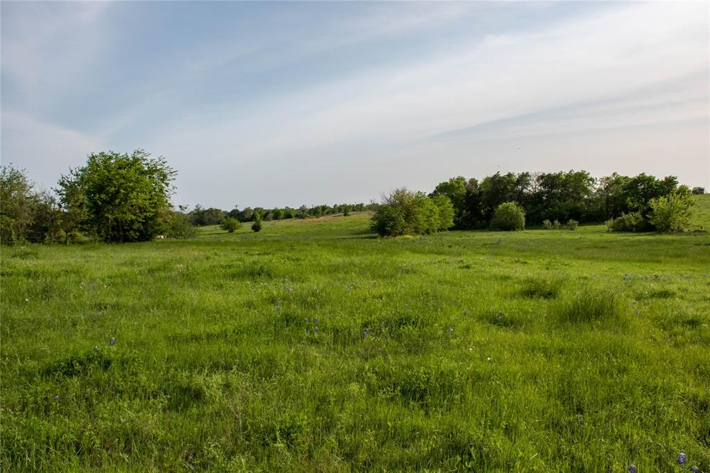 Property is 70 acres out of 132 acre tract located in the Nelson Smith Abstract.  Owner willing to sell in smaller tracts.  See additional MLS Listings:MLS#59173853-36 acres, MLS#12172039-17 acres, MLS#28820374-16 acres. Click here to see aerial drone video:  https://vimeo.com/377341071