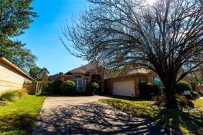 3111 Evergreen Oak