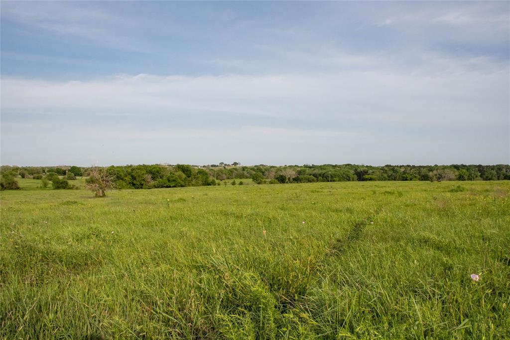 Property is 36 acres out of 70 acre tract also listed for sale.  Located in the Nelson Smith Abstract and part of original 132 acres. More acreage available adjoining this 36 acre tract.  See MLS Listings: MLS#87213989 - 70 Acres, MLS#12172039 - 17 Acres, MLS#28820374 - 16 Acres.