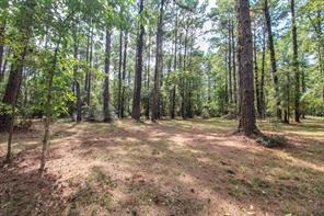 Tr 31 Grand Pine, Livingston, TX, 77351