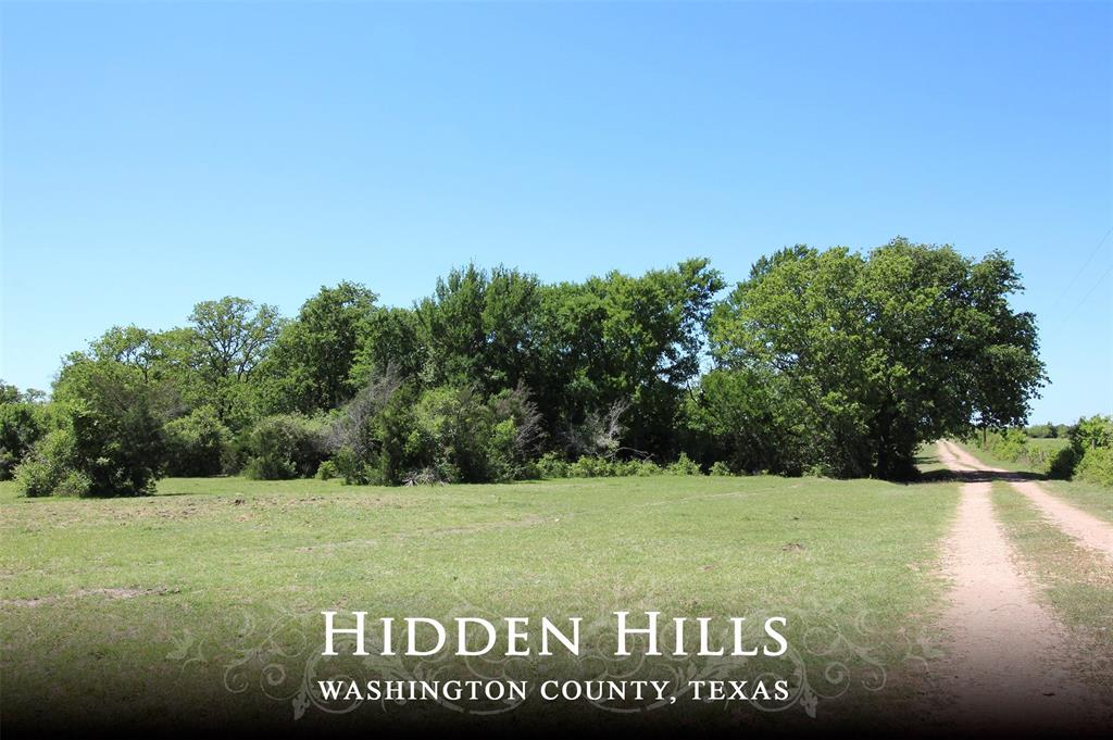 Hidden Hills is a beautiful 43.5 acre tract of land that offers privacy & solitude from the hustle & bustle of everyday life. Located down a private road in the rolling countryside of Sandy Hill. With open meadows tucked in clusters of heavy woods, two small ponds & a wet-weather creek this property has it all. The easement road flanks the property on 2 sides offering easy access to multiple building sites. Whether looking for a weekend get-away or a quite spot for full-time living, don't miss this hidden gem.