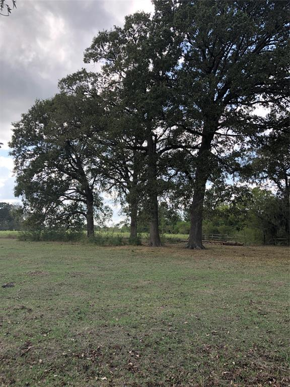 Looking for a place in the country?  This acreage tract is mainly pasture with a cluster of huge oak trees.  This was be a great place to build a home or barndominium ! Giant shady trees are so large you cannot even wrap your arms around! Pasture area would lend itself to horses or cattle.  Just minutes from the Livingston Airport and Beautiful Lake Livingston.