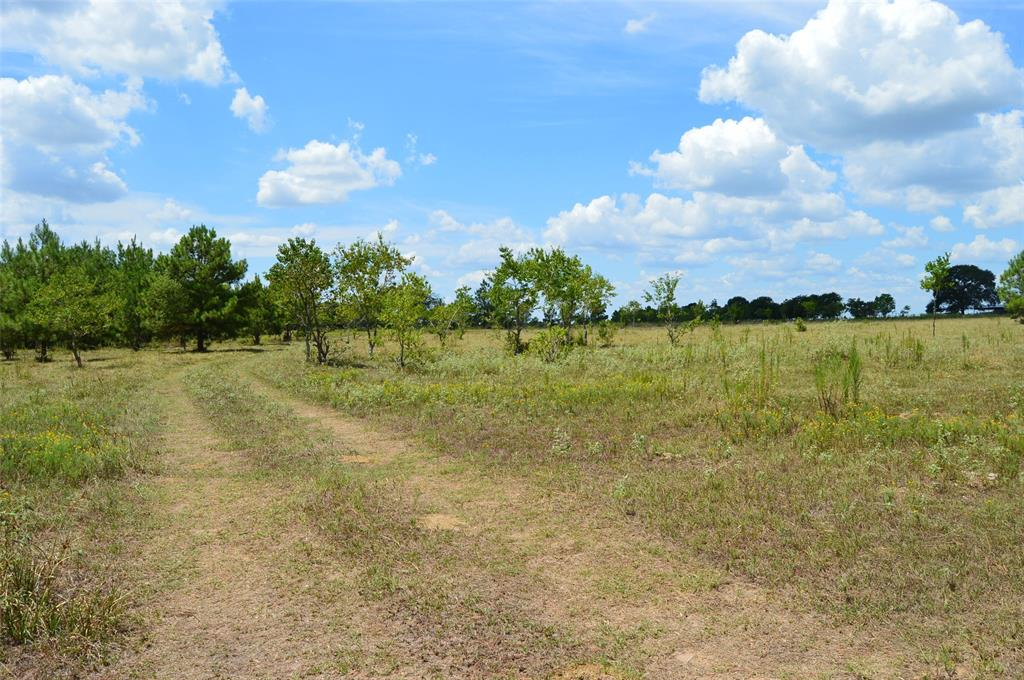 Beautiful unrestricted 45 acres in both Harris and Waller Counties.  Property has scattered trees and a nice roll to it.  There is one pond. Property is close to Highway 290 and Business 290.