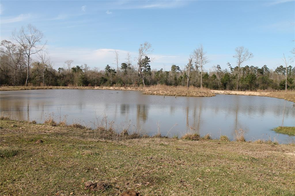77+- acre tract of land conveniently located close to Livingston.  The land is currently used for cattle.  Fully fenced with a pond that you can spend time fishing in. Easy access to Lake Livingston and only minutes from town.