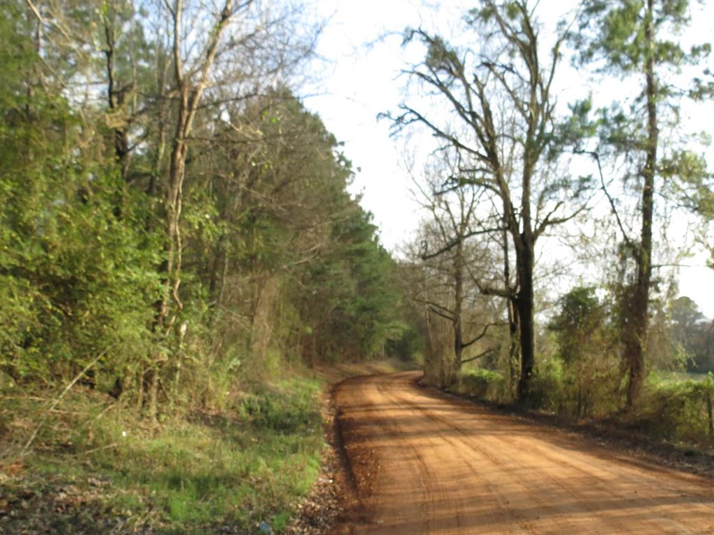 5.4 acres with electricity on the property. Wooded tract, lots of road frontage, has a pole barn, ready for a home.