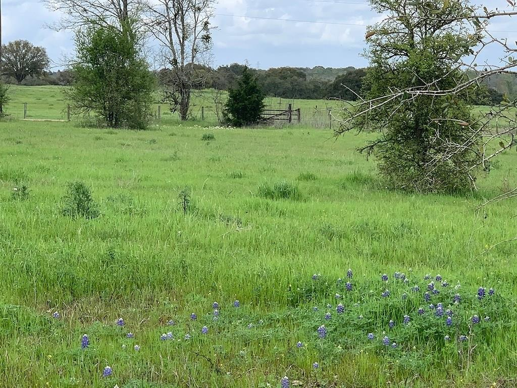 Surrounded by multi million dollar ranches is this 2.397 acre unrestricted home site.  In northern Austin County but on edge of Washington County. High elevation and GREAT VIEWS!  Electric lines on northwest corner.  Water well and septic required.