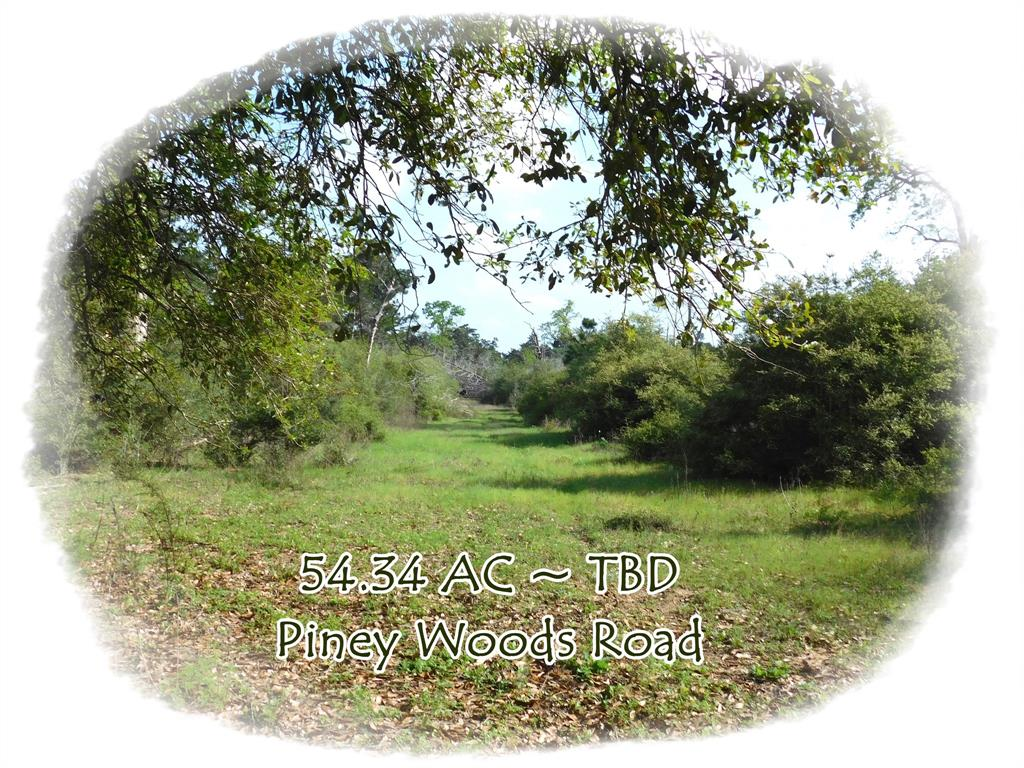 TBD Piney Woods Road, Alleyton, TX 78935