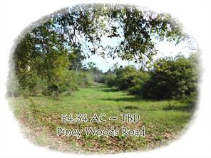 TBD Piney Woods, Alleyton TX 78935