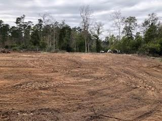 12 acre tract with access to both city water and sewer.  Land is about 50% cleared with area for home site.  Driveway gate with approximately 400 ft of driveway stabilized and graveled; another 300 ft ready for gravel.  Close to everything in Livingston; very private, with acres to roam! This could be just the property you are looking for! Mature trees, NOT in flood plain.