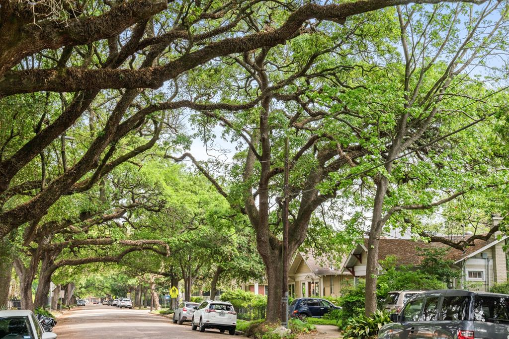 Another view of Bayland Avenue. You'll love your afternoon runs/walks down this beautiful street.