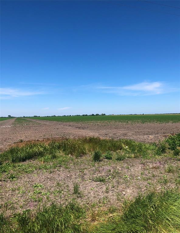 Endless possibilities - farm, ranch, horses, residence, commercial, just imagine! Property is accessible by a road all the way around. There are 2 old wells with no pumps. Currently leased for farming.