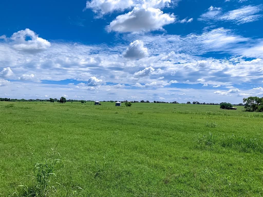 """Brazos Land Company is pleased to present lots in the upscale development of Reagan Estates. Situated in the rolling hills of southern Grimes County, this meticulously developed property provides a quiet, serene setting geared towards relaxed country living while being minutes from hwy 6 and 290. From improved pastures, rolling terrain, long distances views, ponds, scattered trees, woods, to a fabulous creek, Reagan Estates offers a variety of homesites. Short drive to College Station and Houston and no HOA fees. Lot 1- Offering improved pasture, long distance views, nearby power and a private gated entrance from FM 2988, lot 1 provides an open """"homesite on the prairie"""" feel. Excellent opportunity to be a part of the Reagan Estates community while having direct access to FM 2988. Ag exempt. Possible to divide! Contact Listing Agent for details."""