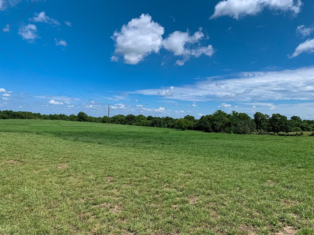 Brazos Land Company is pleased to present lots in the upscale development of Reagan Estates. Situated in the rolling hills of southern Grimes County, this meticulously developed property provides a quiet, serene setting geared towards relaxed country living while being minutes from hwy 6 and 290. From improved pastures, rolling terrain, long distances views, ponds, scattered trees, woods, to a fabulous creek, Reagan Estates offers a variety of homesites. Short drive to College Station and Houston and no HOA fees. Lot 13- Offering improved pasture, rolling terrain, a creek and woods, this is an ideal tract for those looking for a pristine homesite while having room for hunting and the outdoors. Located in the cul-de-sac and one of the exterior lots with larger acreage tracts neighboring two sides of the property. This tract is currently Ag exempt and would also qualify for a wildlife exemption.