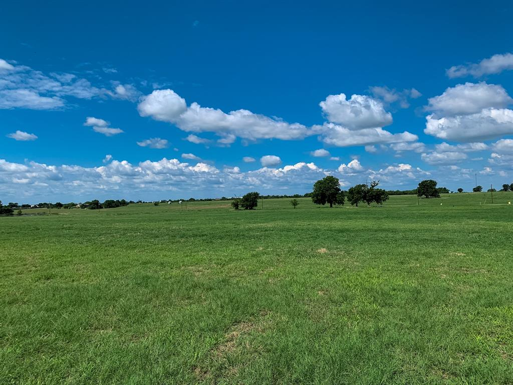 Brazos Land Company is pleased to present lots in the upscale development of Reagan Estates. Situated in the rolling hills of southern Grimes County, this meticulously developed property provides a quiet, serene setting geared towards relaxed country living while being minutes from hwy 6 and 290. From improved pastures, rolling terrain, long distances views, ponds, scattered trees, woods, to a fabulous creek, Reagan Estates offers a variety of homesites. Short drive to College Station and Houston and no HOA fees. Lot 15- Beautiful interior lot with some of the highest elevations in Reagan Estates, providing wonderful views of the surrounding countryside. Improved pasture with a few scattered trees and situated near the cul-de-sac. Ag exempt. Possible to divide! Contact Listing Agent for details.