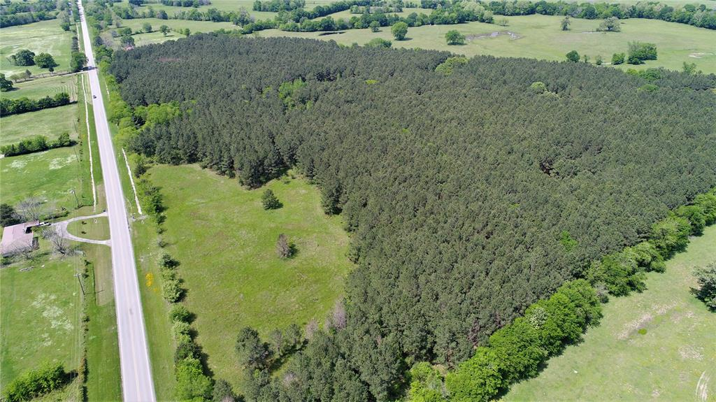 COUNTRY DREAM!   This 54.02-acre property located on 287 South of Crockett is a must see! This pine plantation has some open land and a mix of a few large oak trees. There is a pond on the property and 4-wheeler trails. Water and electricity are available at the road. The owner reports good deer hunting. Give us a call to schedule a showing, today!