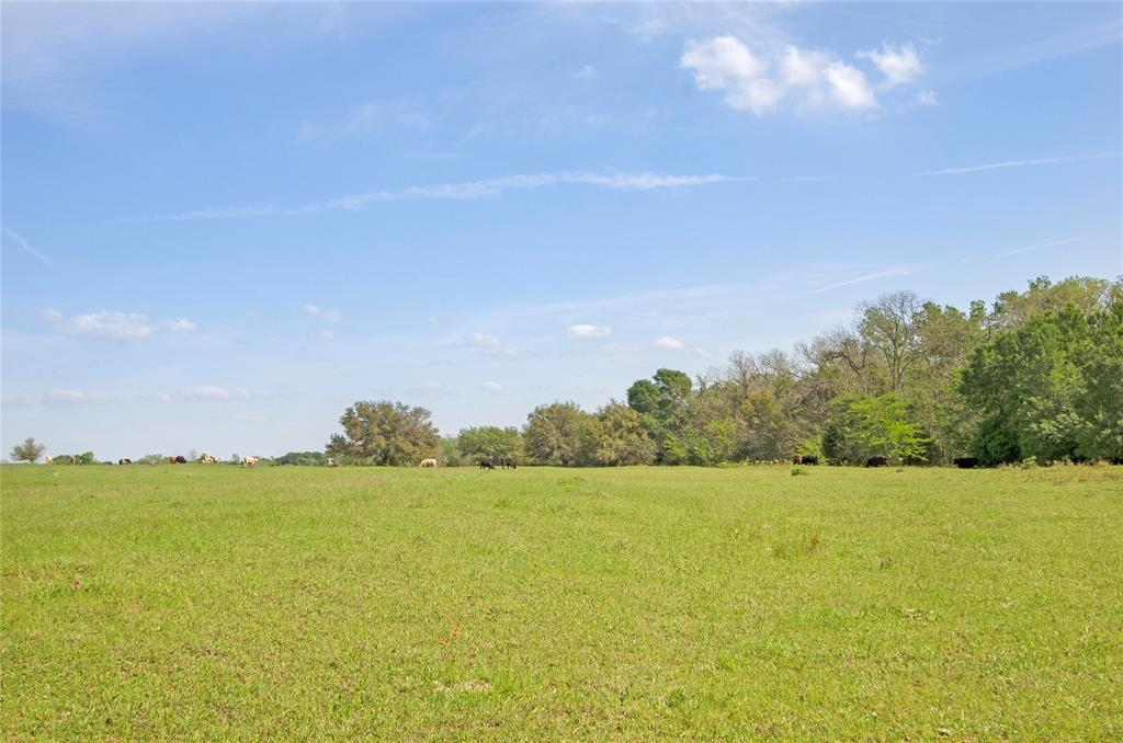 Beautiful property with rolling elevations just waiting for your country home! Approximately 21.579 acres with Kuykendall Creek running along the rear boundary line. Ag exemption is in place. Conveniently located with easy access to both Brenham and College Station.  **Other tracts available**